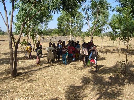 murianette-gomponsom-foret-plantee-par-les-eleves-de-lecole-de-zanbele-dans-le-cadre-de-laction-1-arbre-1-enfant-que-nous-menons-depuis-4-ans